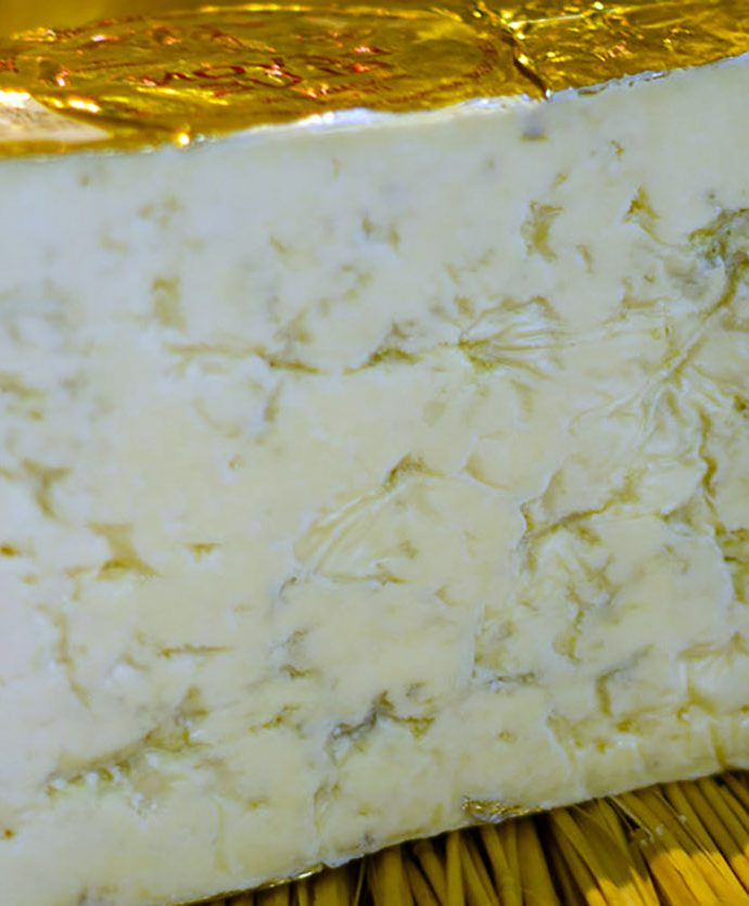 Queso Harbourne Blue